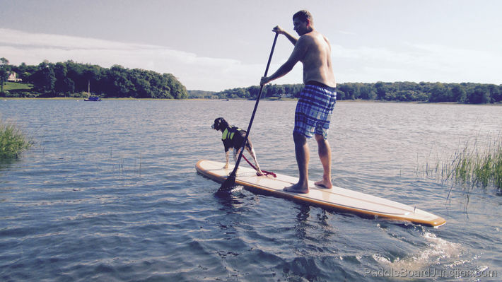 paddle boarding with our dog