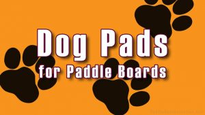 Paddle Board Dog Pads